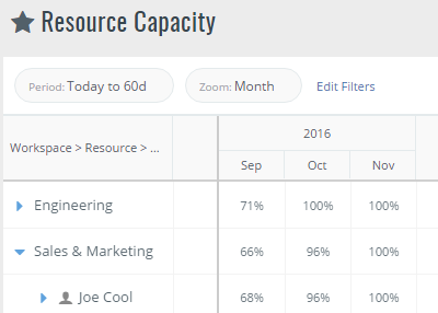 Displays resources capacity